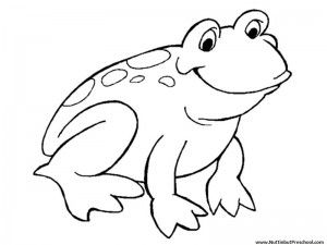 Use this free preschool printable frog coloring page in