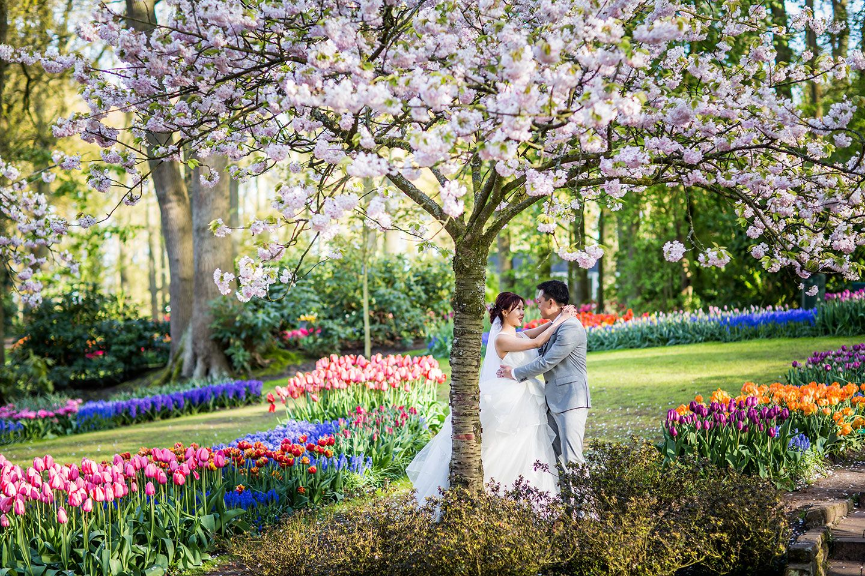 Keukenhof Wedding shoot, Pre wedding photoshoot, Photography