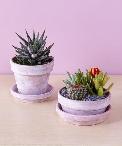 6 Gorgeous Ways to Totally Transform Terracotta Pots