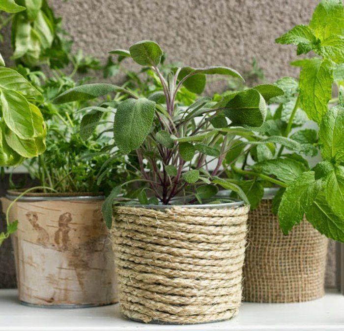 id es malignes pour faire un cache pot pas cher succulentes et compos et pots toile diy et jute. Black Bedroom Furniture Sets. Home Design Ideas