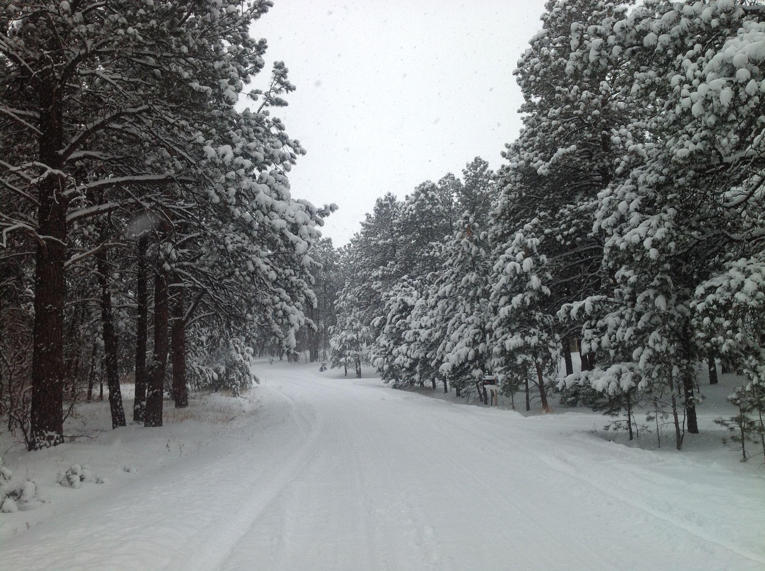 White winter in Colorado