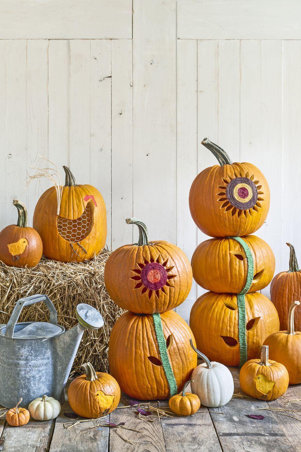25+ Easy Pumpkin Carving Ideas for Halloween Creative