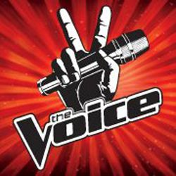5 Career Lessons from 'The Voice' [ARTICLE] via @Career Bliss #careertips #jobsearch