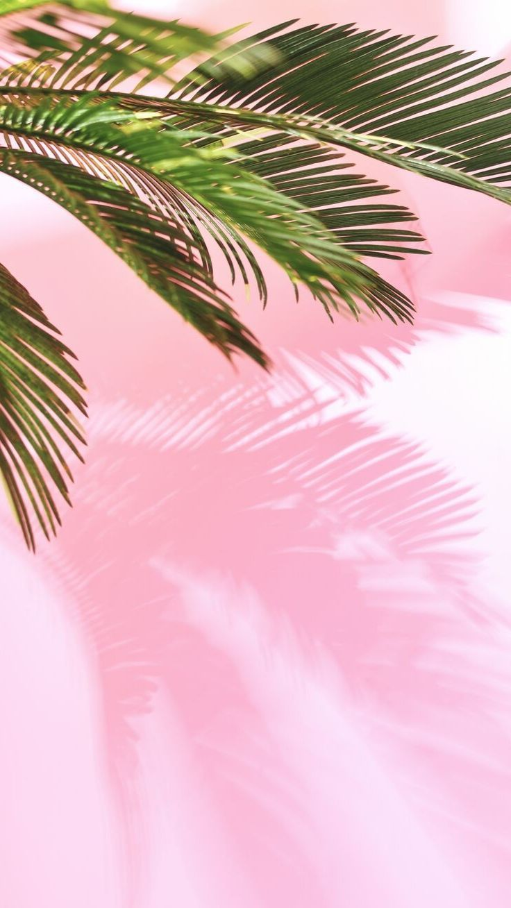 163 Best Pastel Iphone Wallpapers Images In 2020 Pastel Iphone