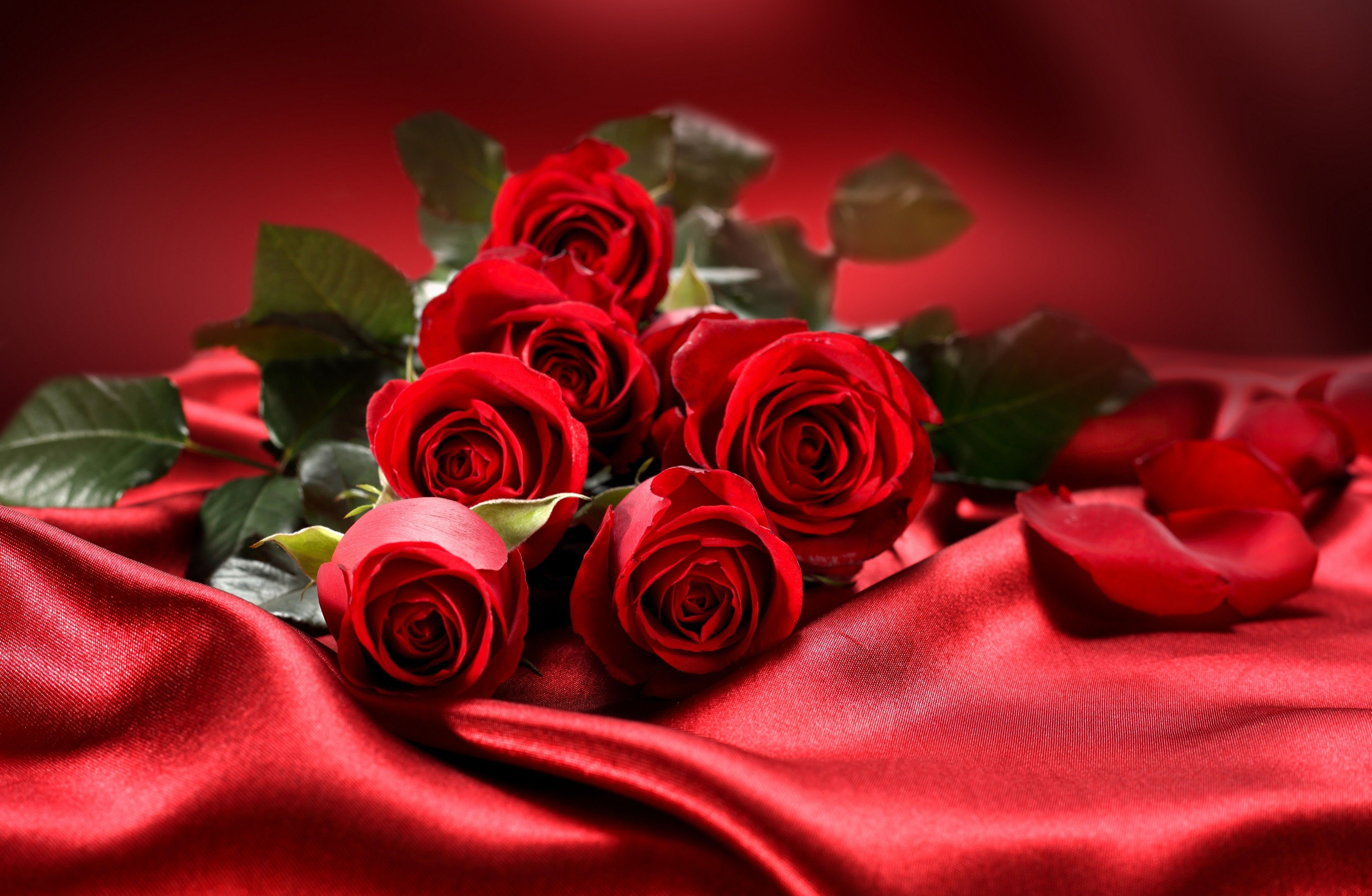 Red Roses On The Red Silk Love Moment Flowers Wallpapers Nature Wallpapers Download Beautiful Beautiful Flowers Wallpapers Red Rose Bouquet Rose Wallpaper
