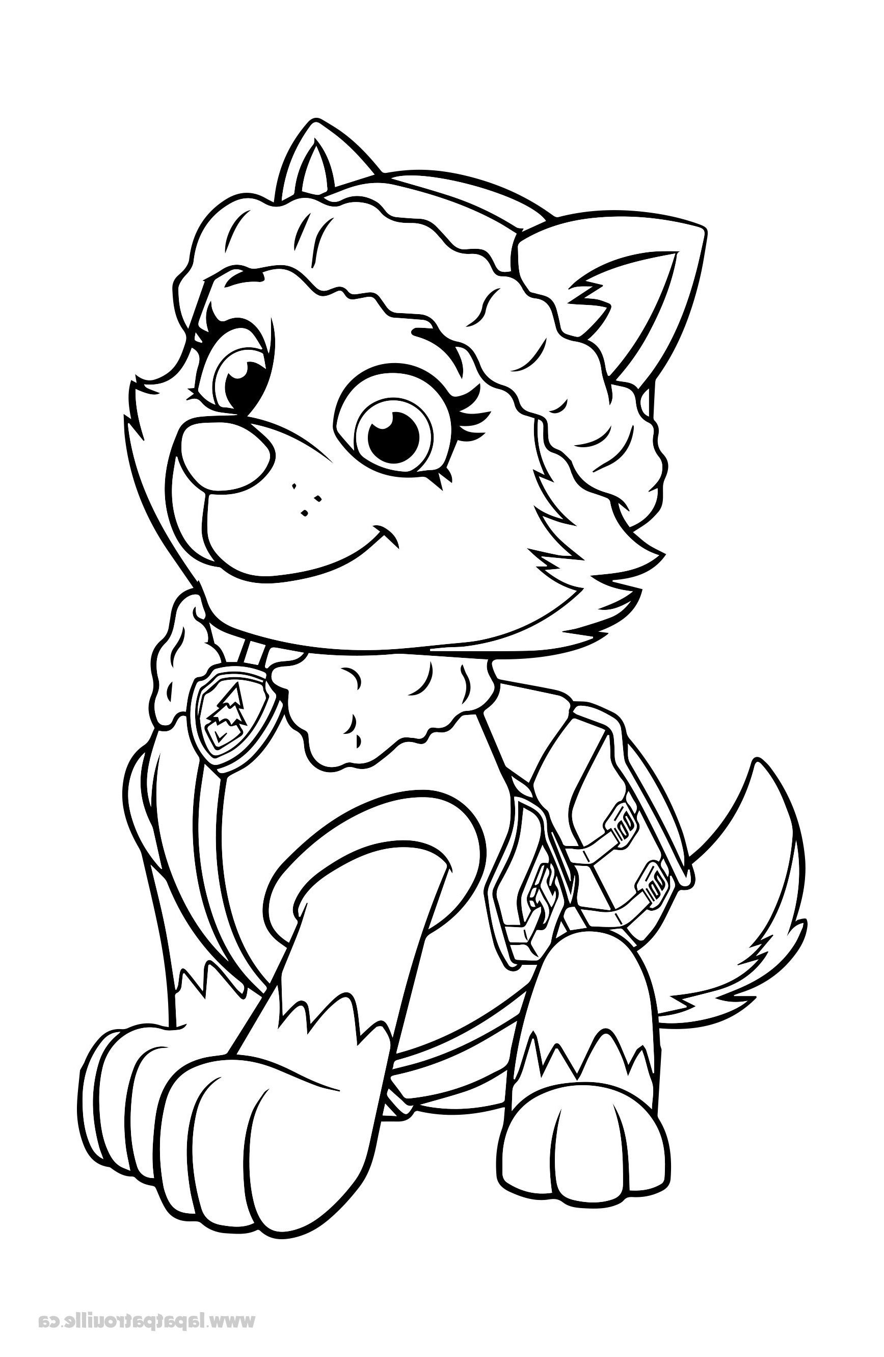 11 Cher Coloriage Pat Patrouille Tracker Pictures En 2020 Coloriage Pat Patrouille Dessin Pat Patrouille Coloriage Paw Patrol