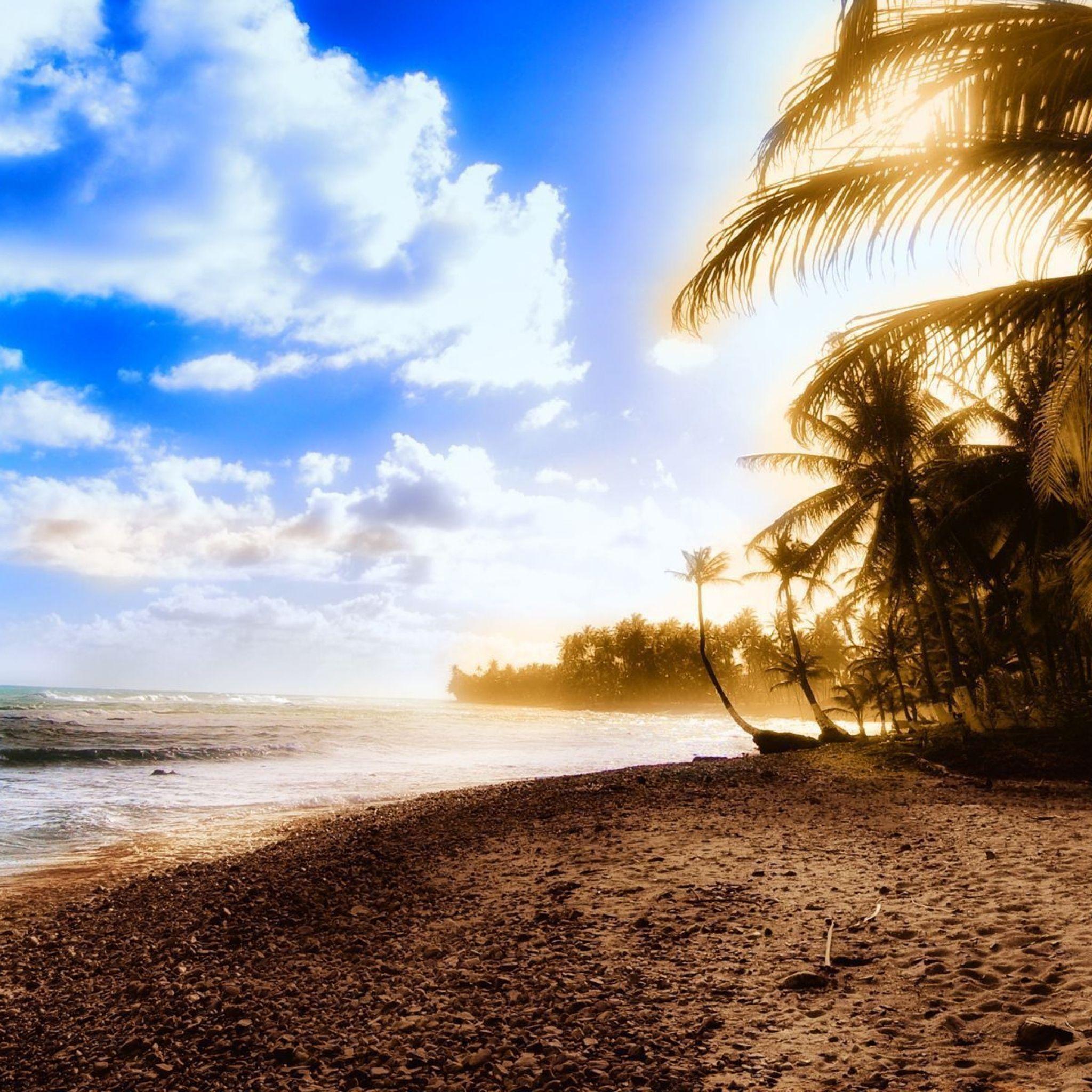 2048x2048 Papel de Parede palmeiras, costa, praia, sol, luz, céu, nuvens, calor