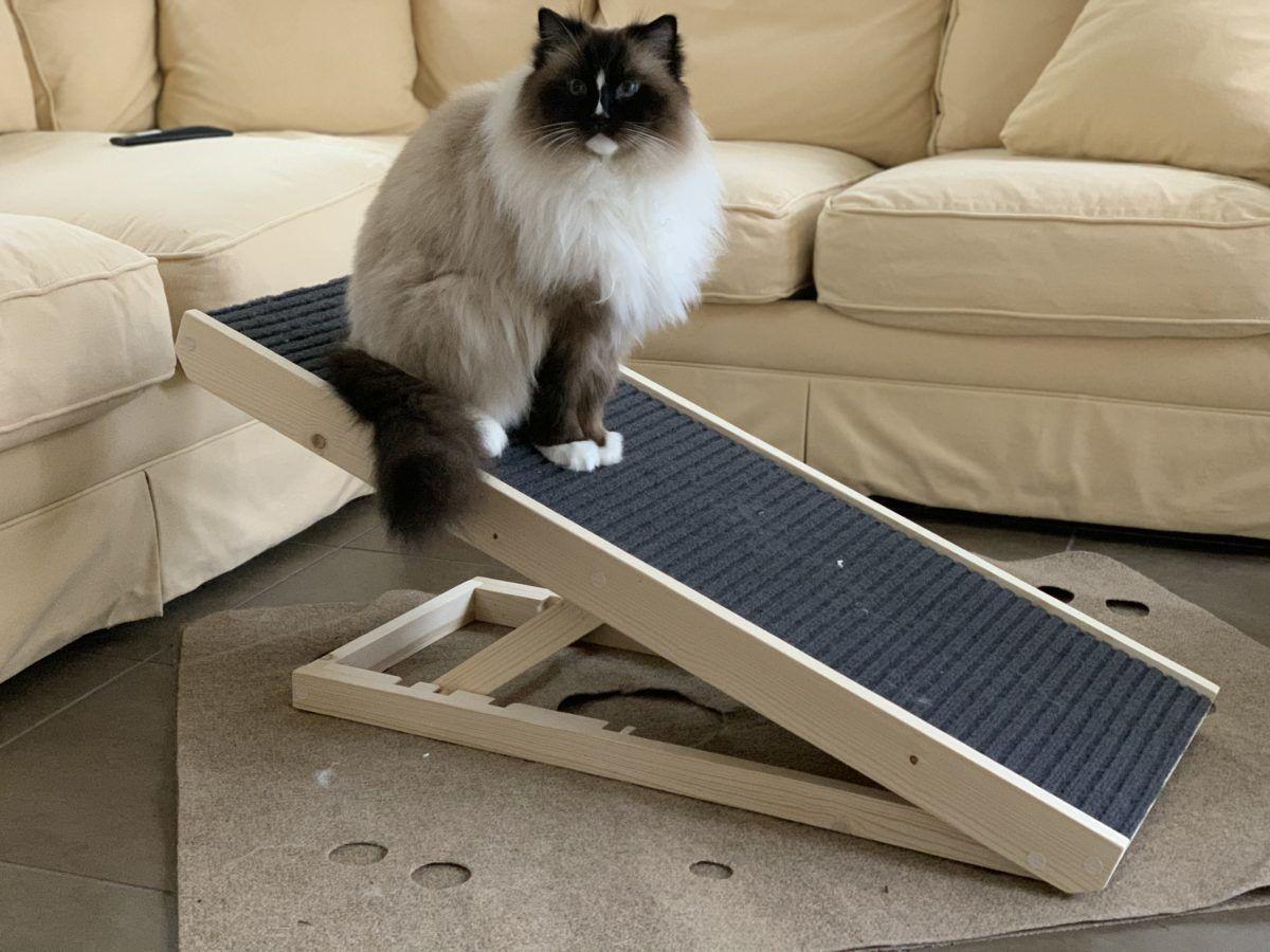 Scratchy Ramp incline cat scratcher best cat scratcher IMG