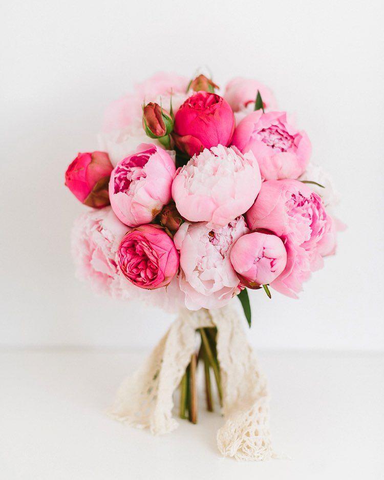 pin von carmy auf brautstrau pinterest pfingstrosen bouquet bin wieder da und pfingstrose. Black Bedroom Furniture Sets. Home Design Ideas