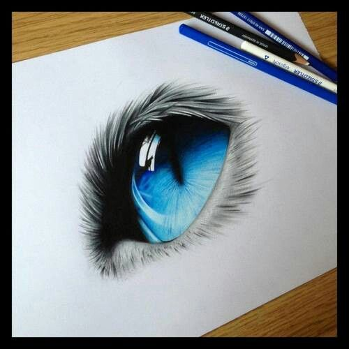Cat eye. Pencil Drawing. Soft touch and skill. | Squiggle ...