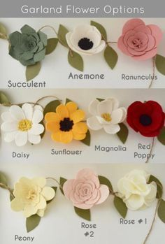 Color + Flower Options - DO NOT PURCHASE