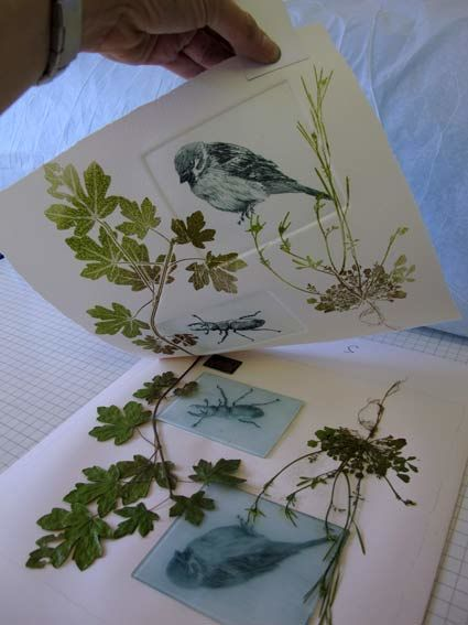 dry point and mono print