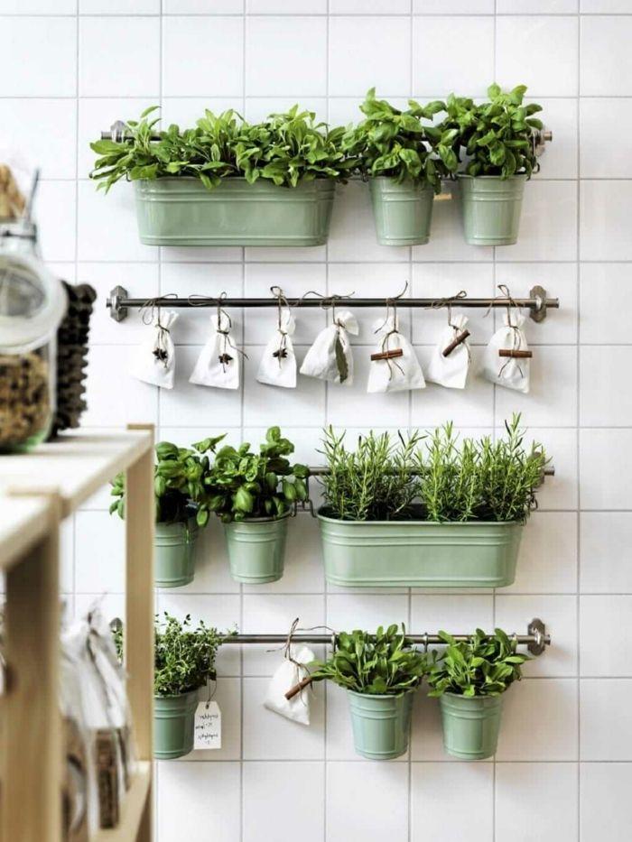 Ziemlich Küche Plant Home Depot Fotos - Kicthen Dekorideen - nuier.com