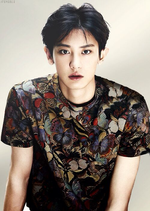 i think i might be a chanyeol bias.. but i'm really confused with baek and yixing * @kkaebsongbaekk *