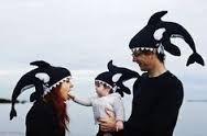 babybites orca - Buscar con Google
