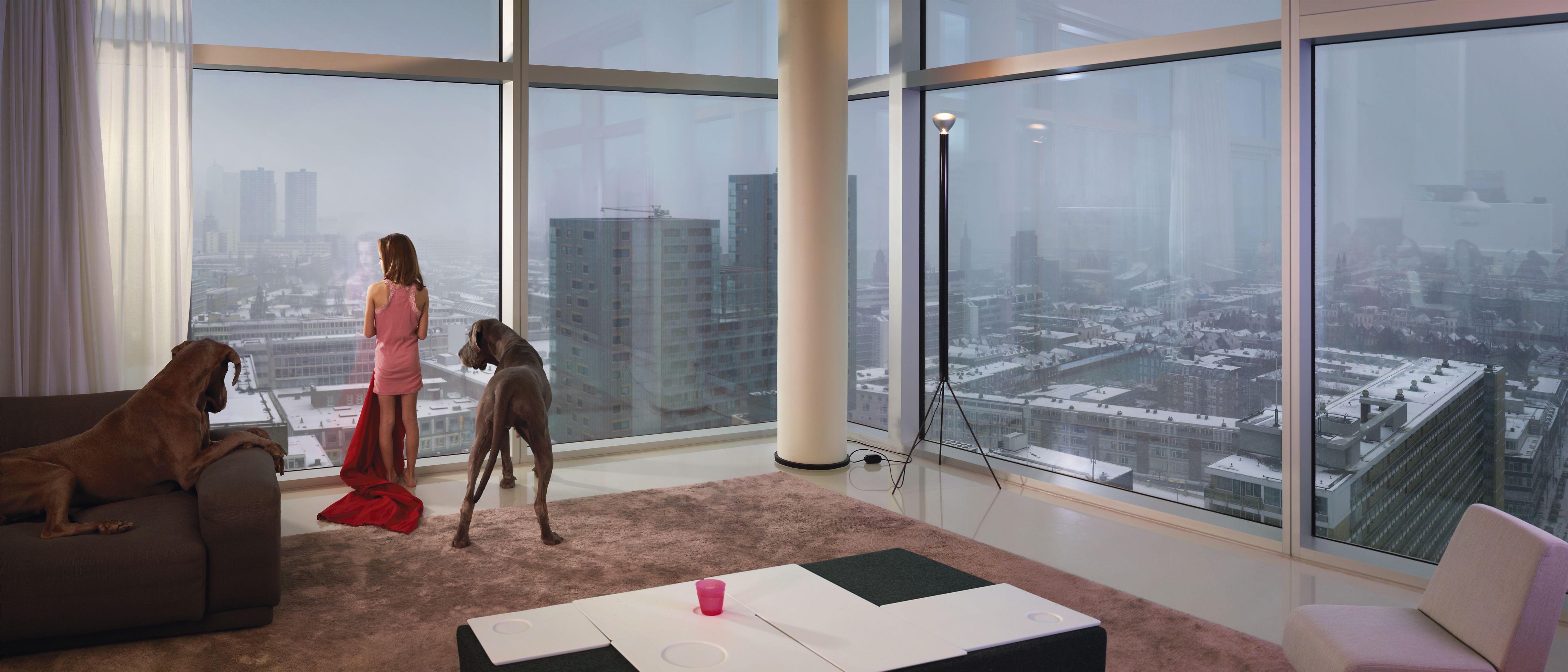Ellen Kooi Rotterdam Tower Dogs Art Pinterest Rotterdam