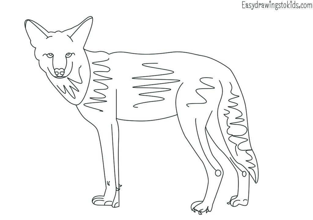 Wild Animals Colouring Pages Animal Coloring Pages Animals Wild