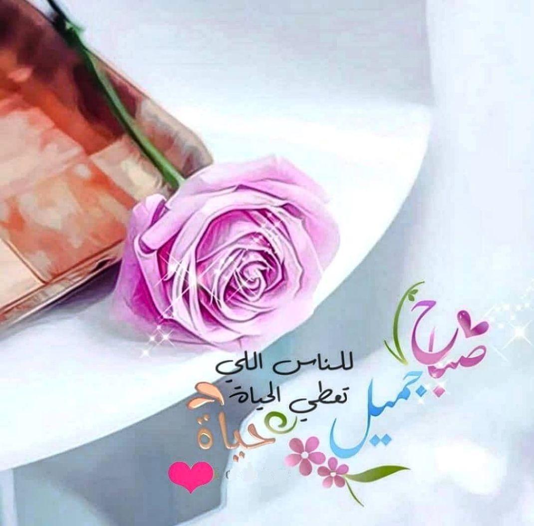 صباح الخير Good Evening Wishes Morning Greeting Good Morning Photos