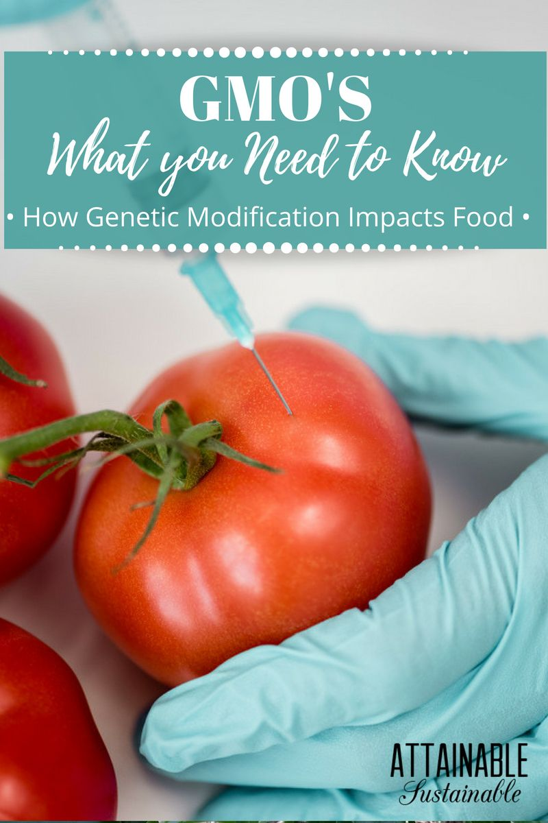 genetically modified foods a growing concern These advantages and disadvantages of genetically modified foods show us that it offers a window to greater food production for a changing world the climate has been growing warmer the oceans have been slowly acidifying.