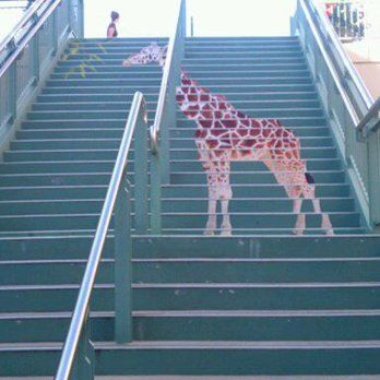 Best Giraffe Painted On Stairs Outdoor Painted Stairs Ideas 400 x 300