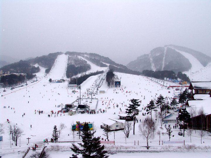 용평리조트 스키장 (Yong Pyong Resort Ski Area) in 평창군, 강원도