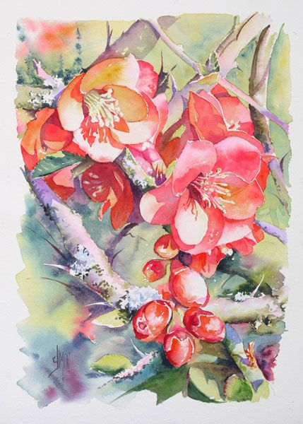 Cognassier Du Japon Joel Simon Avec Images Peintures