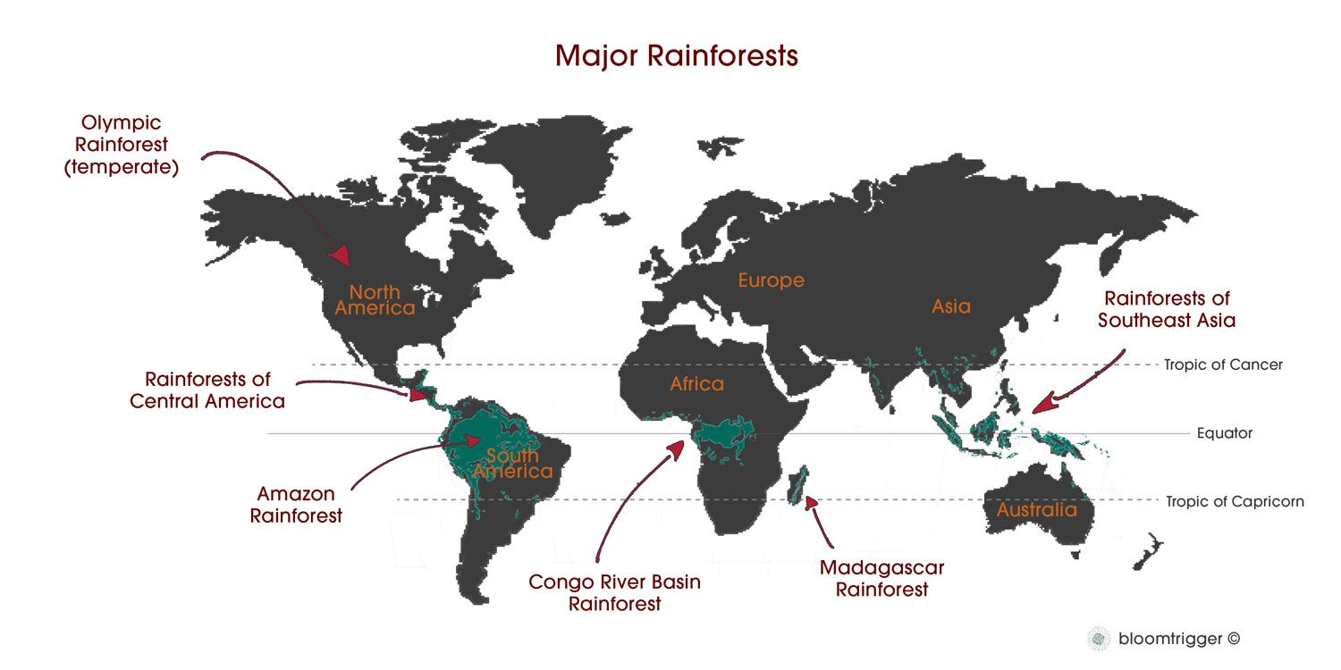 A map of rainforests around the world! | Tropical Rainforests ...