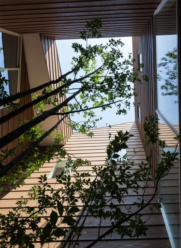 A Modern Japanese House With A Surprise Garden Inside Architecture