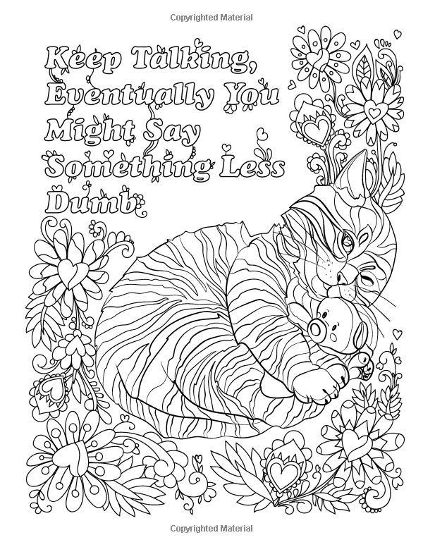 Amazon.com: Hater Cats: An Insult Kitten Adult Coloring ...