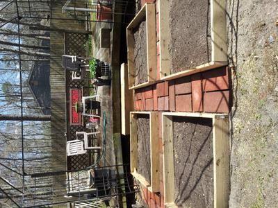 added 4 raised beds: Garden makeover in progress!