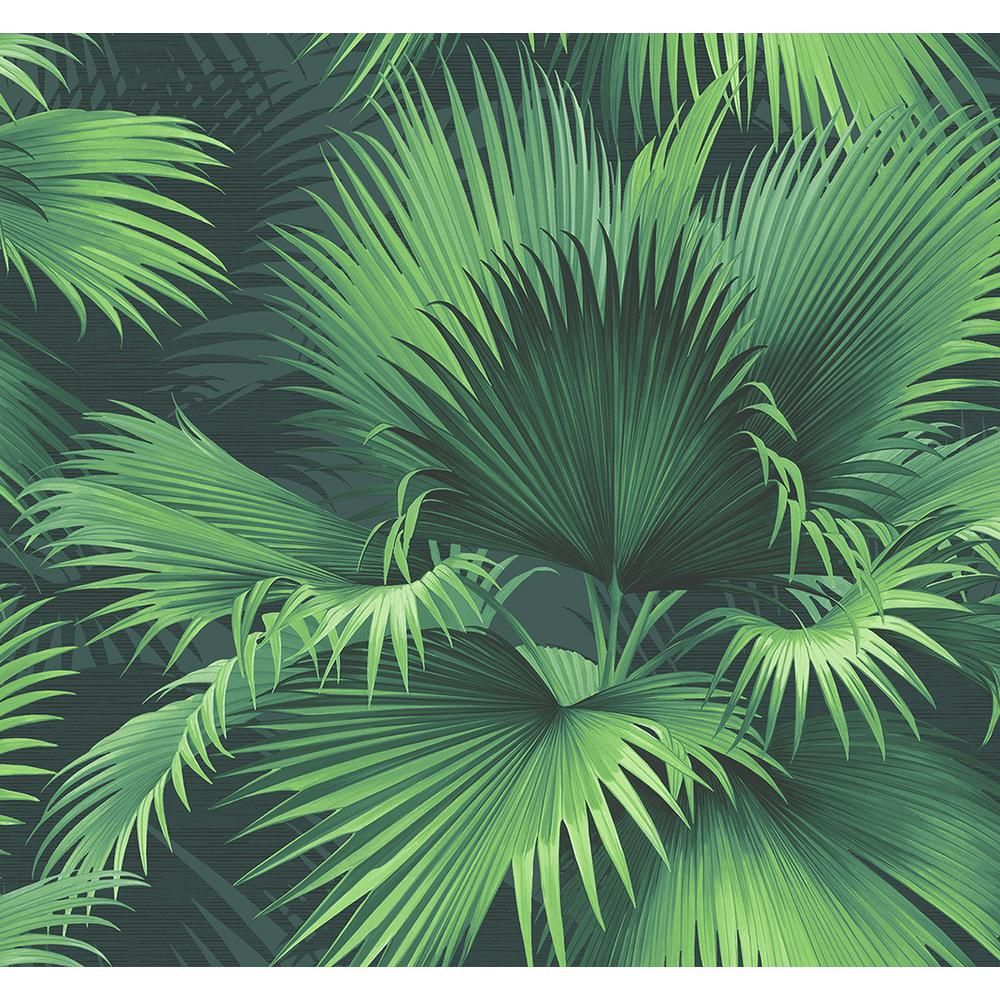 James Endless Summer Dark Green Palm Wallpaper