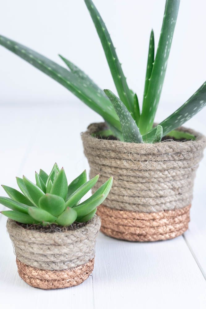 Photo of DIY FLOWER POT WITH ROPE AND COPPER | WYLDEST DIY BLOG