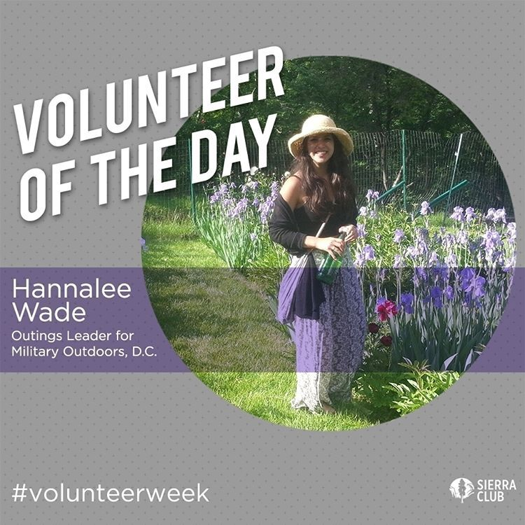 We're sharing stories of some of our incredible volunteers