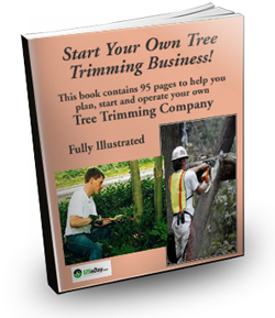 Tree removal business plan custom cv ghostwriting websites ca