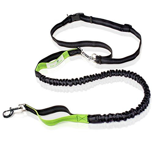Hiking and Shock Absorbing Bungee Walking with Adjustable Waist Belt Fits up to 47 Waist Durable Hands Free Dog Leash for Running