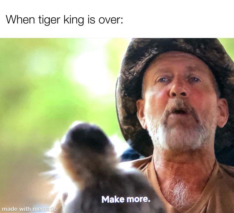 35 Funny Memes for Tiger King Fans TigerKing