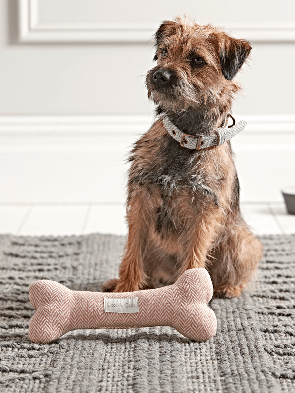 Herringbone Wool Bone Blush Dog house bed, Dog bed