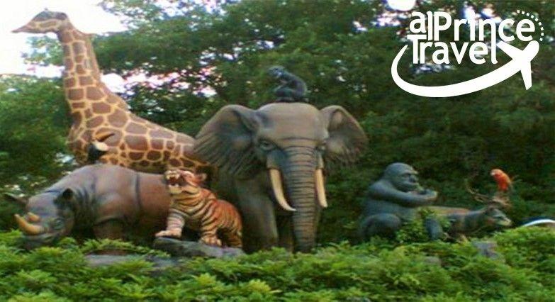 حديقة الحيوانات في اسطنبول Faruk Yalcin Zoo شركة البرنس للسياحة و السفر في تركيا Al Prince Travel