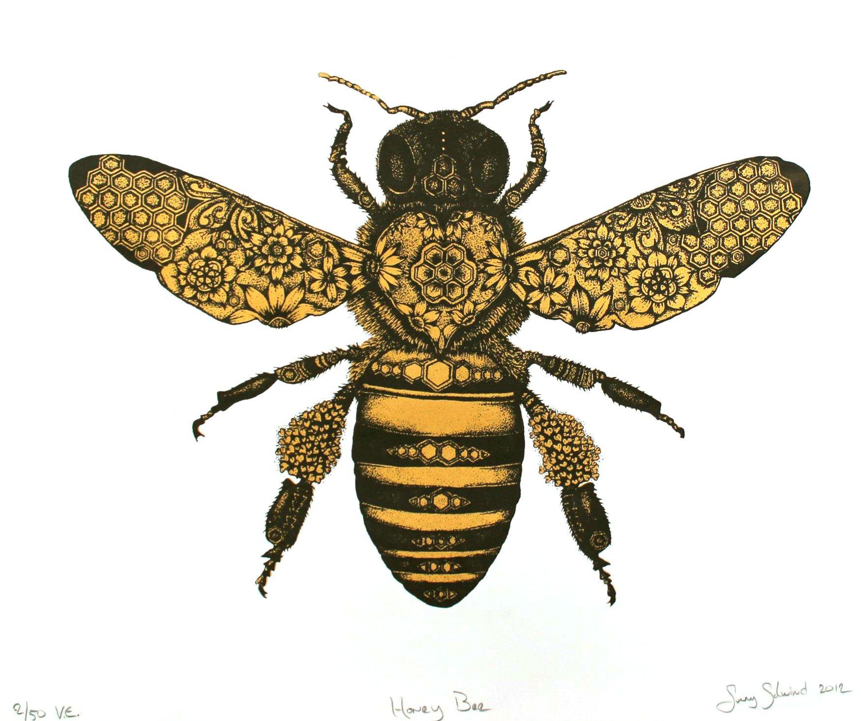 Honey Bee Drawing Google Search Bee Drawing Bee Tattoo Bee Art