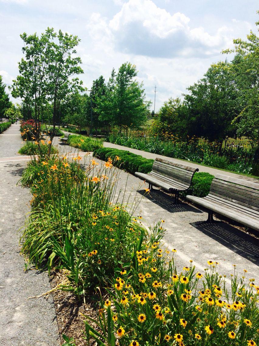 Railroad Park Birmingham Al Landscape Birmingham Landscape Architecture