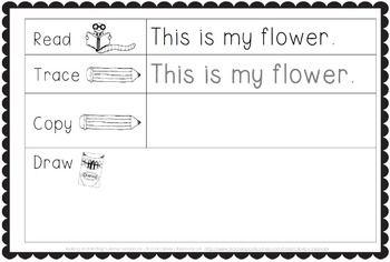 Making And Writing Summer Sentences For Kindergarten Vocab