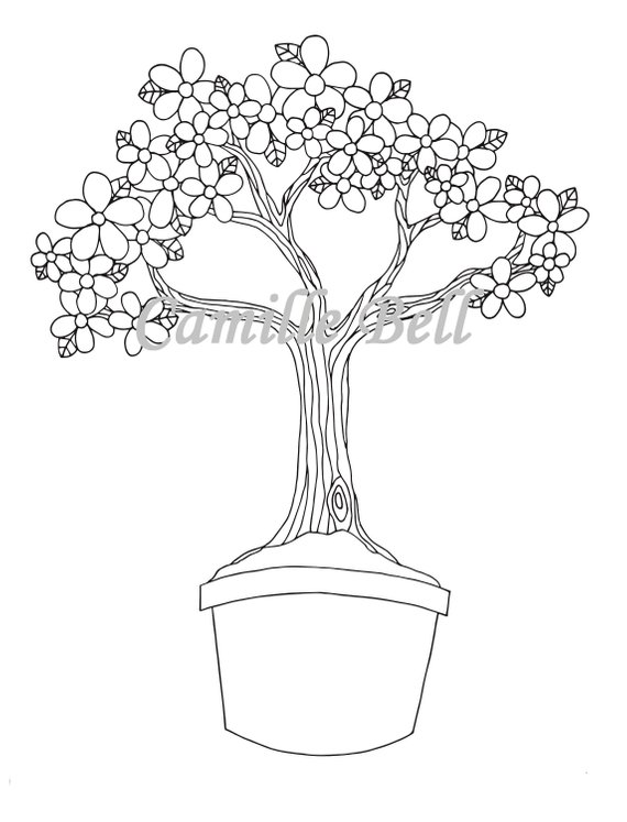 Flower Bonsai Tree Coloring Page Adult Coloring Page Download