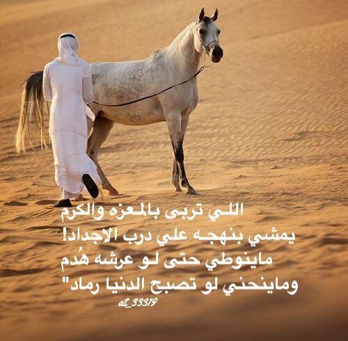 شعر نبطي قصيد ابيات قوافي عشق قافية غزل مدح كلمات خواطر بو ح Funny Arabic Quotes Beautiful Arabic Words Queen Quotes