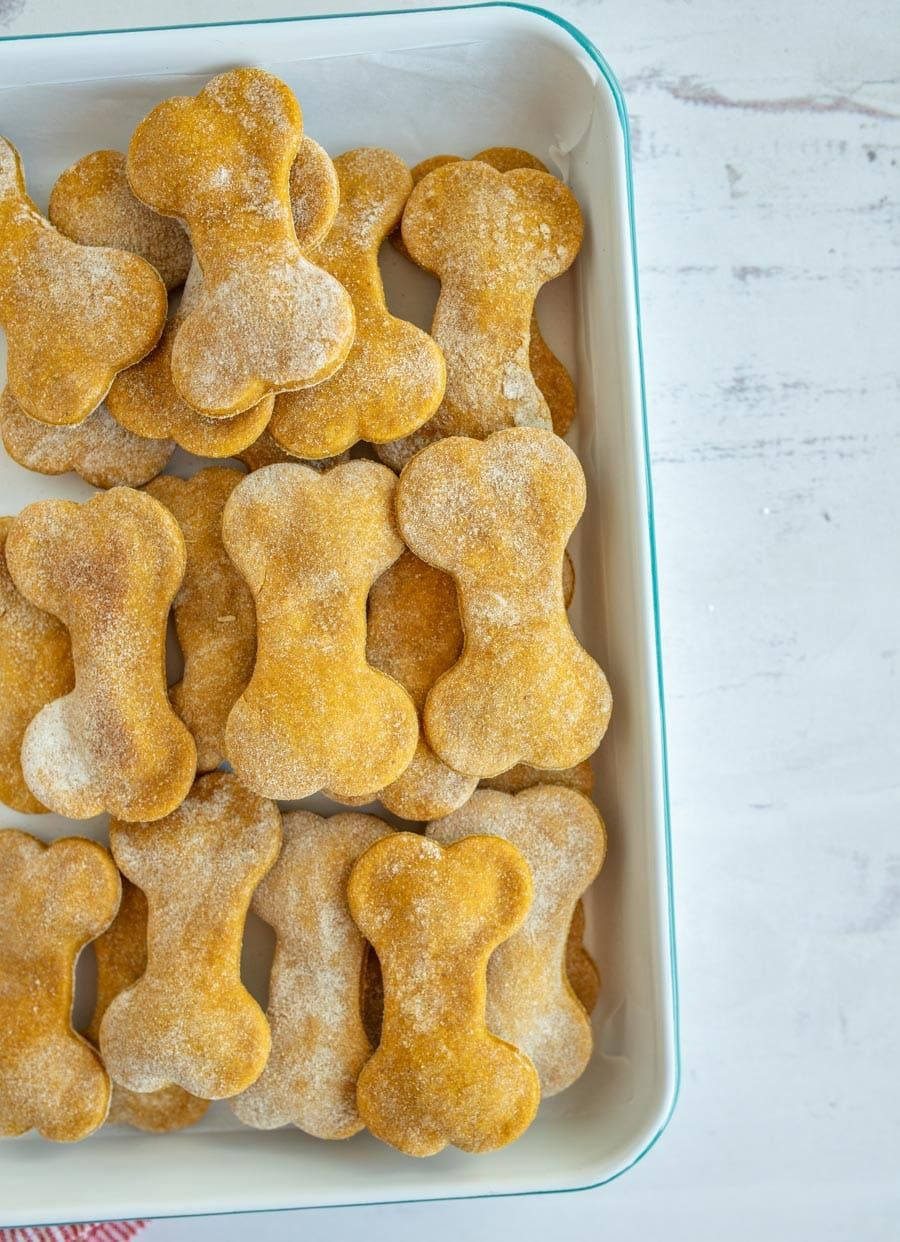 Easy pumpkin dog treat recipe with images dog treat
