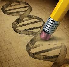 ingenieria genetica y biotecnologia - Buscar con Google