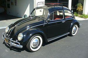 Volkswagen : Beetle - Classic black