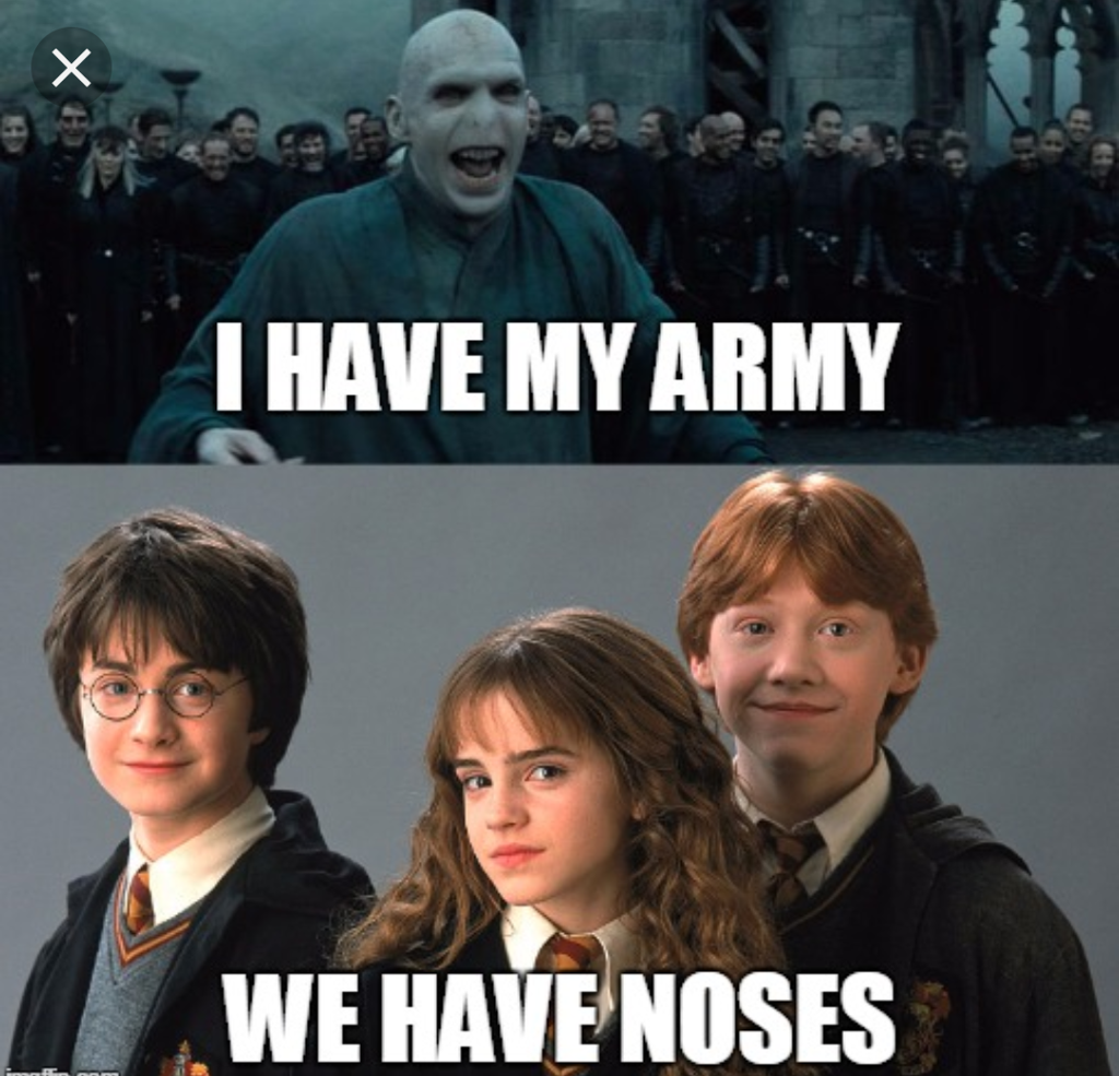 Top 25 Memes De Harry Potter Funny Hilarious Humor Pictures Harry Potter Voldemort Harry Potter Memes Hilarious Harry Potter Mems