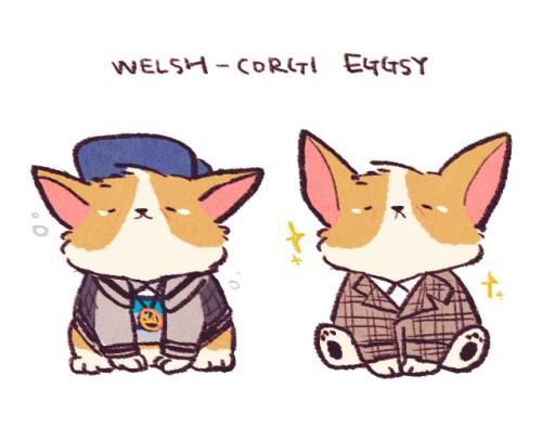 Eggsy is like a little corgi! :3