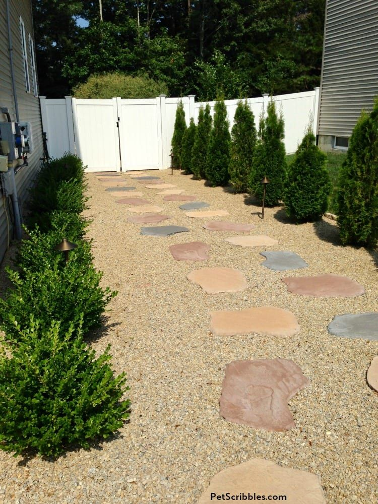 Side Yard Makeover: Easy Care and Attractive in 2020 ...