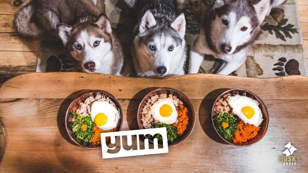 Pin On Dog Food Treats